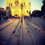 Notre Dame Paris in the summer PARIS BY EMY