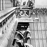 Tour Sud Cathédrale de Notre Dame Must See in Paris PARIS BY EMY